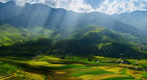 Vietnam-valley-fields
